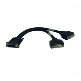 Tripp Lite Cable Divisor en Y DMS Macho - 2x DVI Hembra, 30cm, Negro