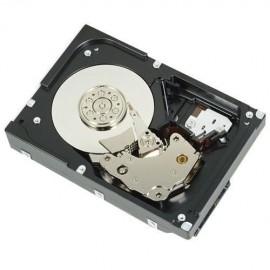DIsco Duro para Servidor Dell 1TB SATA 7200RPM